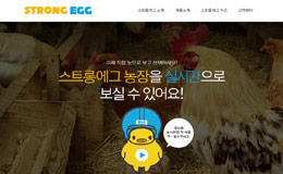 STRONGEGG企业网站