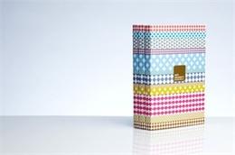 HOUSE彩色画格子封面国外生活时尚类杂志设计