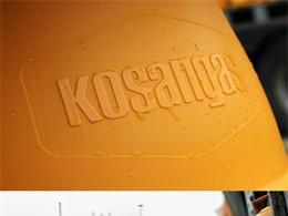 Kosan Gas - Corporate Identity 國外企業VI設計欣賞