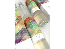 彩色几何纹理LUX果酒概念包装设计