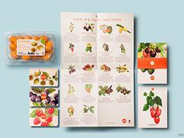 Ocati哥伦比亚出口欧洲水果包装设计