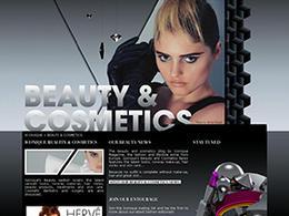 Iconique Fashion 国外品牌服饰网页设计欣赏