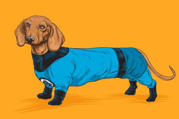 Josh Lynch趣味狗狗插畫設計