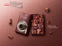 精致的佳能相机创意广告欣赏