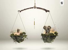 WWF保护动物系列创意公益广告(十六)