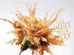 Cedro Textil纺织品环保印染创意广告欣赏