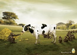 Binggrae香蕉口味牛奶系列创意广告欣赏