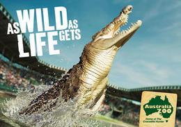 澳大利亚动物园系列宣传广告欣赏