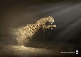 WWF世界自然基金會系列創意公益廣告(六)