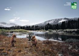 野生动物电视节目宣传广告