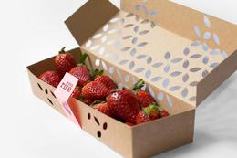 美觀又環保的水果紙盒裝