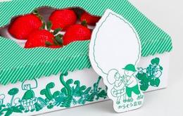 草地清新綠色插畫風 草莓包裝