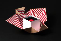 無需黏膠的結構化紙箱