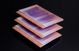 Okolo玻璃工作室创意画册