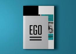 风格独特的EGO画册设计