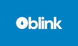 blink品牌VI设计欣赏
