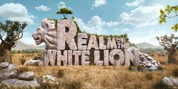 一例狮子形态的超赞立体字设计欣赏