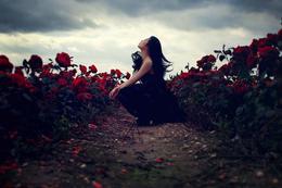 英国摄影师Sarah Ann Wright时尚摄影作品