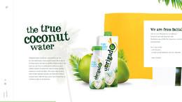 Obrigado椰子水飲料果汁網站