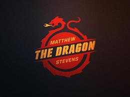 国外精致造型平面Logo设计欣赏8个