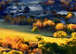 Photoshop调出外景照片唯美的秋季金黄色调