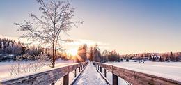 雪地淘宝背景