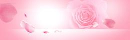 粉色渐变情人节妇女节电商海报背景