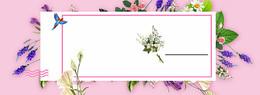 紫色花瓣几何粉色banner背景