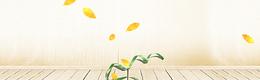 淘宝天猫干货上新清新黄色坚果海报背景