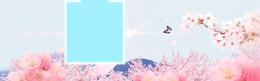 情人节樱花淘宝海报背景