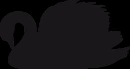 黑天鹅PNG透明背景