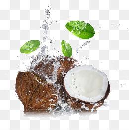 水花飞溅里的椰子